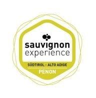 sauvignon_experience.jpg